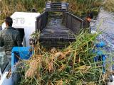 水葫芦打捞船 全自动割草保洁机械 河道水草收割设备