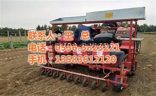 移栽机|军岩农业机械|甜叶菊移栽机厂家