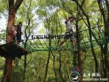 历奇探险-丛林飞越树上探险乐园