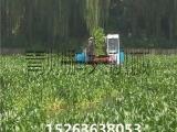 水上水草打捞船、河道水草清理机械、保洁船厂家