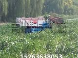 全自动湖面水草清理机械、水葫芦打捞船价格