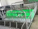 科学设备双体母猪产床2.1*3.6无缝焊接坚固耐用