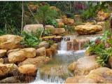 园林石,景观石-黄腊石.到峰景园林基地来