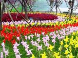 春季主题展各种风车制作出租荷兰风车节公园布置租赁