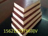 建筑模板 优质建筑木模板建筑木质模板尺寸德州星冠