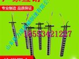 资阳PLE-100柱式分裂棒多个密封件