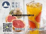 热门行业茶饮加盟,鹿谷制茶品牌不容小觑
