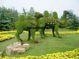 豫天园城市绿雕