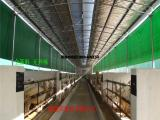 猪场卷帘布生产厂家