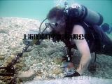 潜水员水下手持式金属探测器
