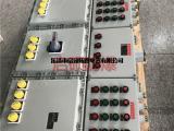 防爆现场检修电源插座箱