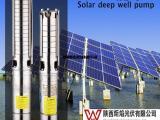 供应太阳能水泵灌溉系统