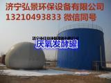 厌氧发酵罐-养殖场粪污处理沼气厌氧发酵设备