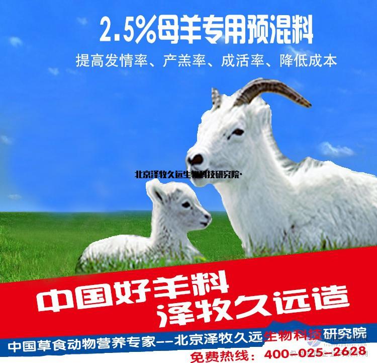 泽牧久远母羊饲料预混料