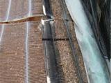 挡墙加固土工格栅 耐高低温土工格栅
