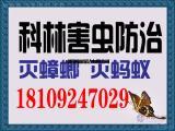 咸阳灭害虫灭蟑螂,西咸新区灭虫-科林害虫防治