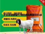 通用型的营养羊浓缩饲料,羊浓缩饲料推荐配方