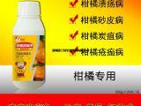 柑橘溃疡病炭疽病砂皮病专用特效杀菌剂 喜百农疮痂溃疡净