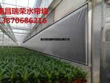 温室通风降温高效节能方案水帘风机