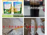 豆腐渣发酵保存技术豆腐渣发酵菌