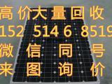 旧太阳能光伏板回收 单晶硅光伏组件 碎电池片高价上门回收