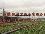 苗圃大棚加湿设备,铭田喷雾系统雾化加湿器厂家