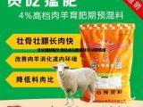 英美尔快速育肥羊饲料让养殖户们倍感欣慰