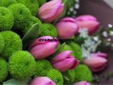 武汉鲜花郁金香盆栽,郁金香鲜切花市场,个性郁金香鲜花送货上门