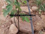 林木小管出流灌溉滴头生产商