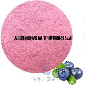 唐朝食品天然蓝莓粉 果蔬粉 水果粉厂家直销