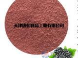 唐朝食品天然黑莓粉 果蔬粉 水果粉厂家直销