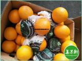 新鲜水果批发埃及进口夏橙新鲜酸橙供应广州江南市场