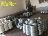 客户来厂参观镀锌丝、热镀锌丝、冷镀锌厂家供应