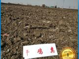 厂家直销干鸡粪发酵鸡粪蚯蚓粪价格 哪里有质量好的干鸡粪有机肥