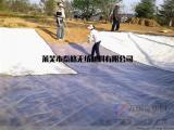 土工膜 HDPE土工膜 垃圾填埋场 人工湖 鱼塘 防渗膜