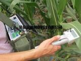 常见便携式光合测定系统,光合测定系统厂家