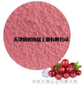唐朝食品天然蔓越莓粉 果蔬粉 水果粉厂家直销