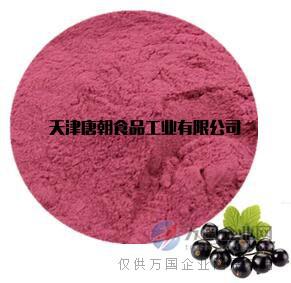 唐朝食品天然黑加仑粉 果蔬粉 水果粉厂家直销
