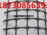 供应钢塑复合格栅生产基地出厂价
