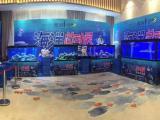 海洋生物展览鱼缸出租海水鱼主题展报价海狮表演租赁