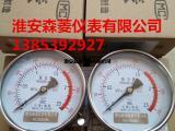 不锈钢耐震压力表 Y-100B-FZ  316L