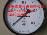 弹簧管压力表Y-100  0-10MPa  M20*1.5