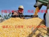 求购玉米豆粕大豆棉粕麸皮次粉油糠等饲料原料