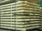 密歇根芬兰木木材材料 红雪松凉亭 菠萝格直销厂家