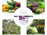 厂家供应大量元素水溶肥 生理克抗逆剂作物平衡肥