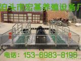 母猪产床价格 双体母猪产床尺寸 养猪设备厂家直销