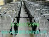 复合底母猪定位栏畜牧养殖器械大猪各类保胎育肥栏品种齐全
