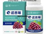 葡萄增甜的方法诺普琳葡萄叶面肥