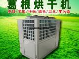 葛根烘干机设备 热门产品葛根烘房设计