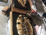 电烤鱼箱烤鱼炉子烤鱼机供应商